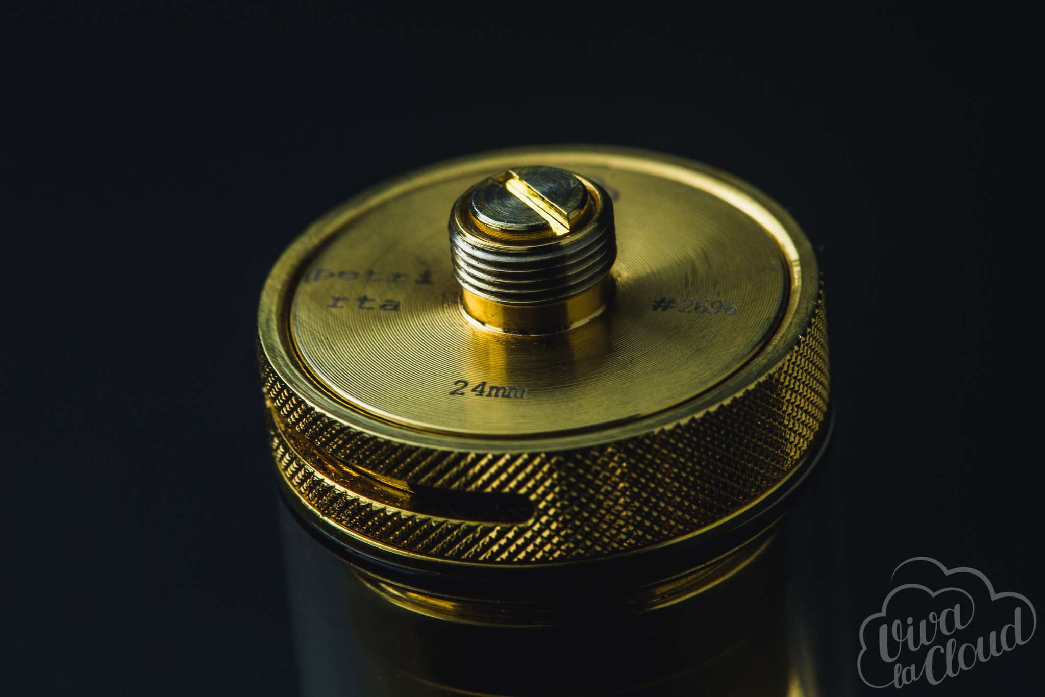 dotmod petri rta 24